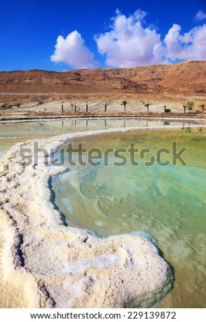 Israel in October. Salt formed a long track in the Dead Sea. Along the coast passes palm alley - stock photo