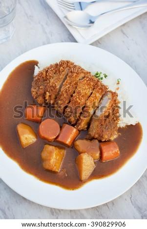 japanese tonkatsu pork curry rice - stock photo