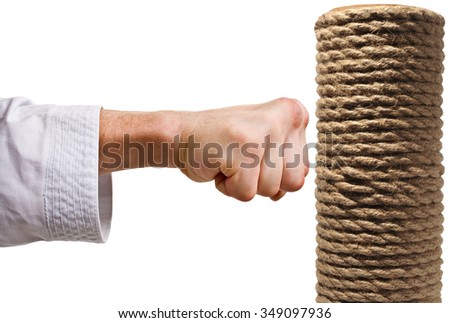 Karate punch.Training karate masters.The image on a white background. - stock photo