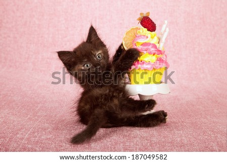 Kitten hugging cupcake on white cupcake stand on pink background  - stock photo
