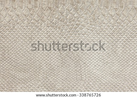 leather texture ,snake skin texture - stock photo