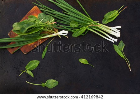 leaves of sorrel and green onion on cutting board on a dark metallic background. blackout photo - stock photo