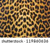 leopard skin decorative background - stock photo