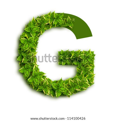 Letter G  alphabet of green  G Letter 3d Wallpaper