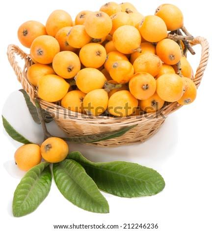 loquat fruit fruit gifts