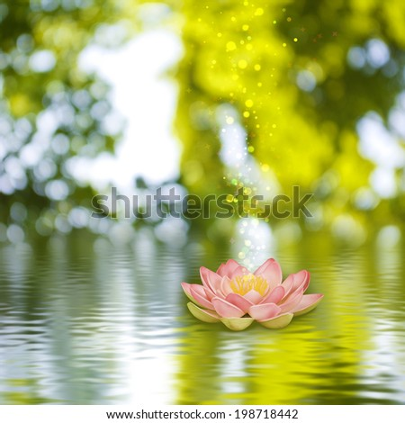 lotus flower on the water against the green background - stock photo