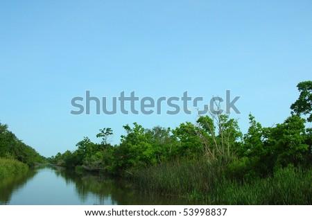 Louisiana bayou river - stock photo