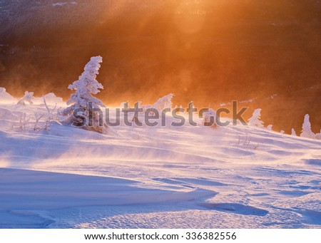 Majestic dawn landscape with mountains during snow storm. - stock photo