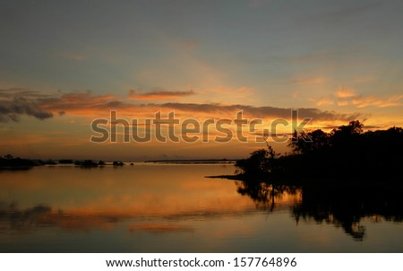 Mirrored forest line on the Rio Negro in the Amazon River basin, Brazil, South America        - stock photo