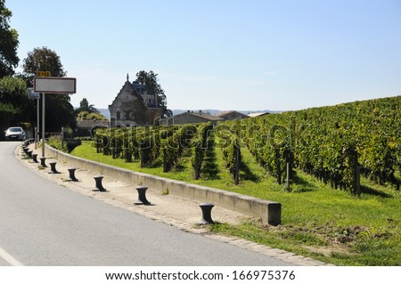 modern road through the vineyards. France. - stock photo