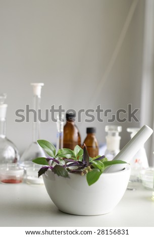 mortar and pestle  with herbs in laboratory - stock photo