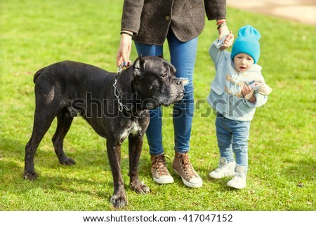 mother and little child plays with a dog on the grass, Cane   - stock photo