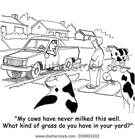 """My cows have never milked this well.  What kind of grass do you have in your yard?""."
