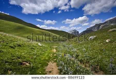 Nice colors in the pyrenees - stock photo
