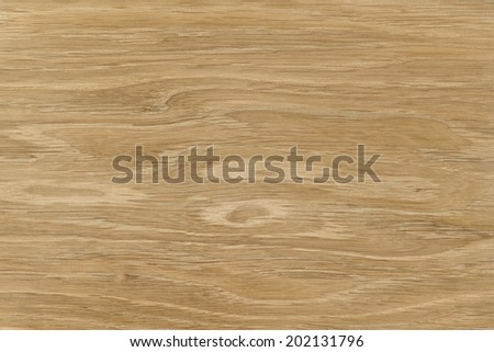 Oak. High resolution natural wood texture, no scratches, no dust  - stock photo
