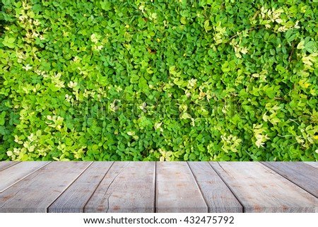 old wooden floor platform on green leaf, and flower nature background - can be used for display or montage your products - stock photo