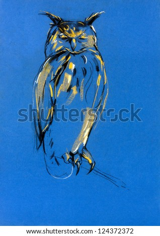 Original pastel and  hand drawn painting or  working  sketch of owl.Free composition of birds of prey. rapacious birds. - stock photo
