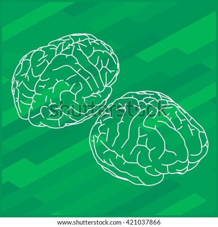 outline illustration of human brain. Human brain isometric view.  - stock photo