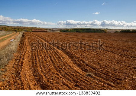 Overview of field and mountain landscape with plowed fields in the foreground, house and oak and pine forest. Man with dog approaches a road. In autumn. Le�³n. Spain - stock photo
