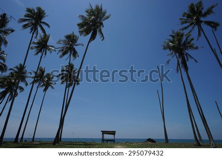 Palm trees and wooden huts near the beach