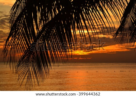 palms and Caribbean sunsets red palm trees silhouette on sunset tropical beach - stock photo