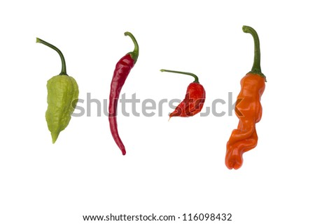 4 peppers isolated on white