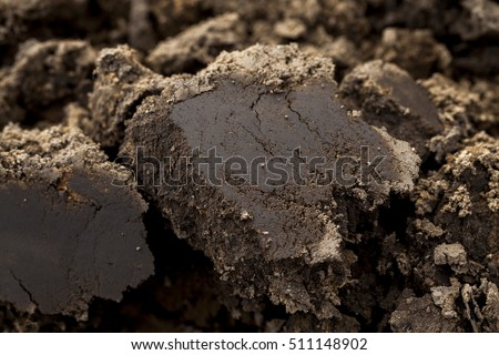 photographed close-up of plowed land in an agricultural field before planting the crop. Small depth of field
