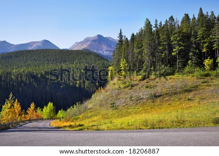 Picturesque road and trees with yellow and green foliage in mountain reserve