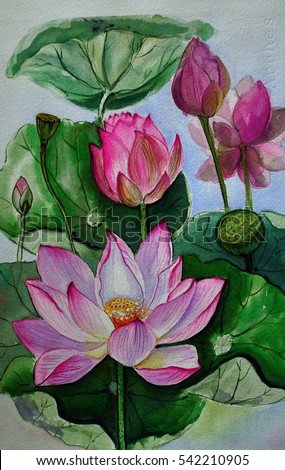 Pink lotus flower hand drawn watercolor stock illustration 542210905 pink lotus flower hand drawn watercolor painting on paperbanana mightylinksfo Gallery