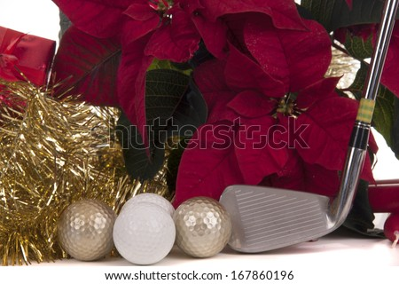 poinsettia  is a traditional plant with Christmas