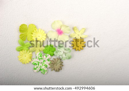 Pretty paper flowers for scrapbooking and card making.  Paper flowers in green and yellow tones. Shot from above against white background.