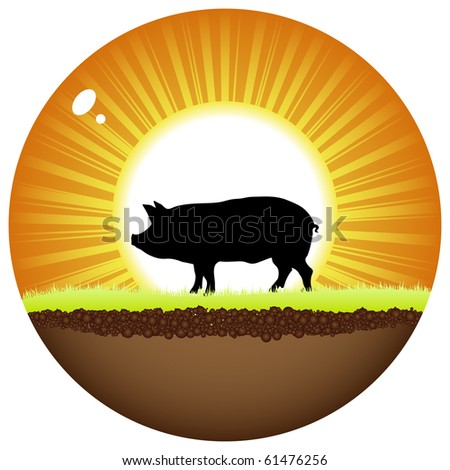 (raster image of vector) sunshine ball with pig