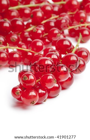 Red berries or red currants