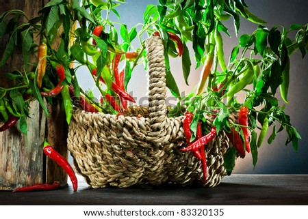 ,red hot chilli pepper on basket, - stock photo