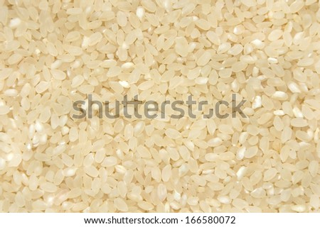 rice background