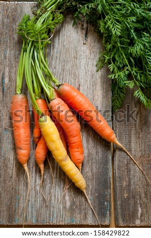 Ripe carrots on a wooden background - stock photo