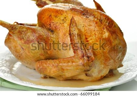 roasted turkey close up - stock photo