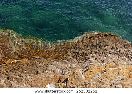 rocky shore into the sea. close-up - stock photo