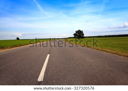 Rural asphalted road in the summer. road through the field - stock photo