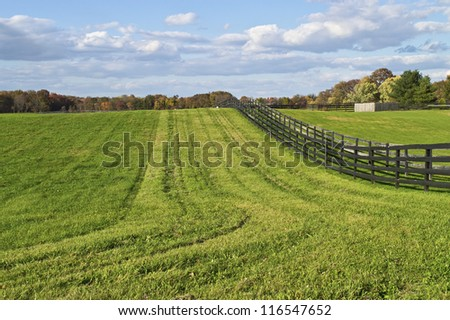 """Rural Landscape"" Green pastures and a bright blue sky with puffy clouds in rural Central New Jersey. - stock photo"