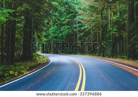 scene of beautiful road to mt Rainier national park, United States - stock photo
