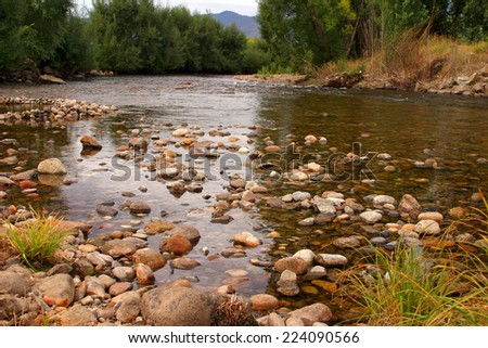 Scenic scene with river and forest, Australia