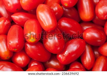 """Seeda"" is one of the Thailand's tomatoes."