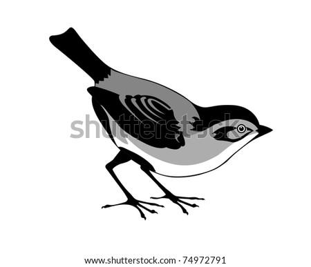 silhouette of the bird on white background - stock photo