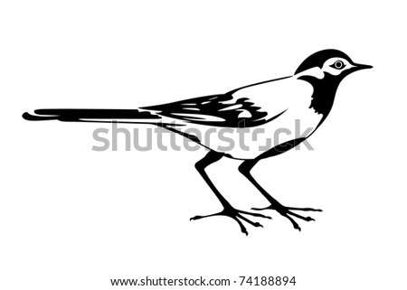 silhouette of the wagtail on white background - stock photo