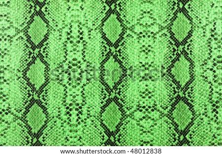 snake skin green - stock photo
