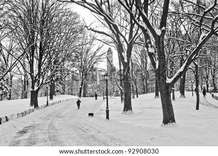 """""""Snow Stroll in Park"""" A black and white view of Central Park after a fresh snowfall. - stock photo"""