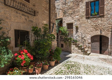 Solar hot Italian town streets with flowers and beautiful greenery in Tuscany.