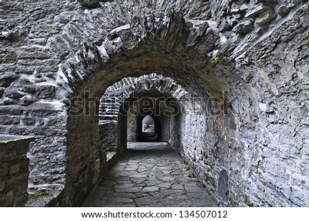 St. Brigitta convent ruins, Pirita, Tallinn, Estonia  - stock photo