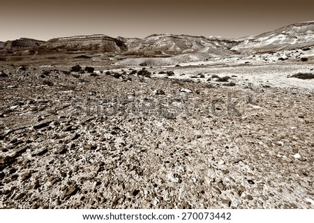 Stones of Grand Crater in Negev Desert, Israel, Vintage Style Toned Picture - stock photo